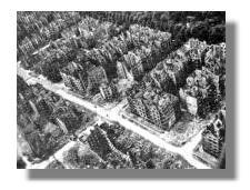 Hamburg nach Bombardierung 1943