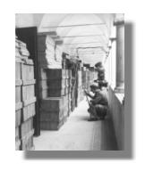 Bücher-Raub