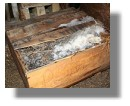 100 Jahre alte Brandy-Kiste aus dem Eis der Antarktis