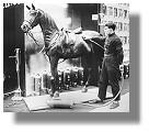 Grüne Woche 1928: erster Pferdestaubsauger